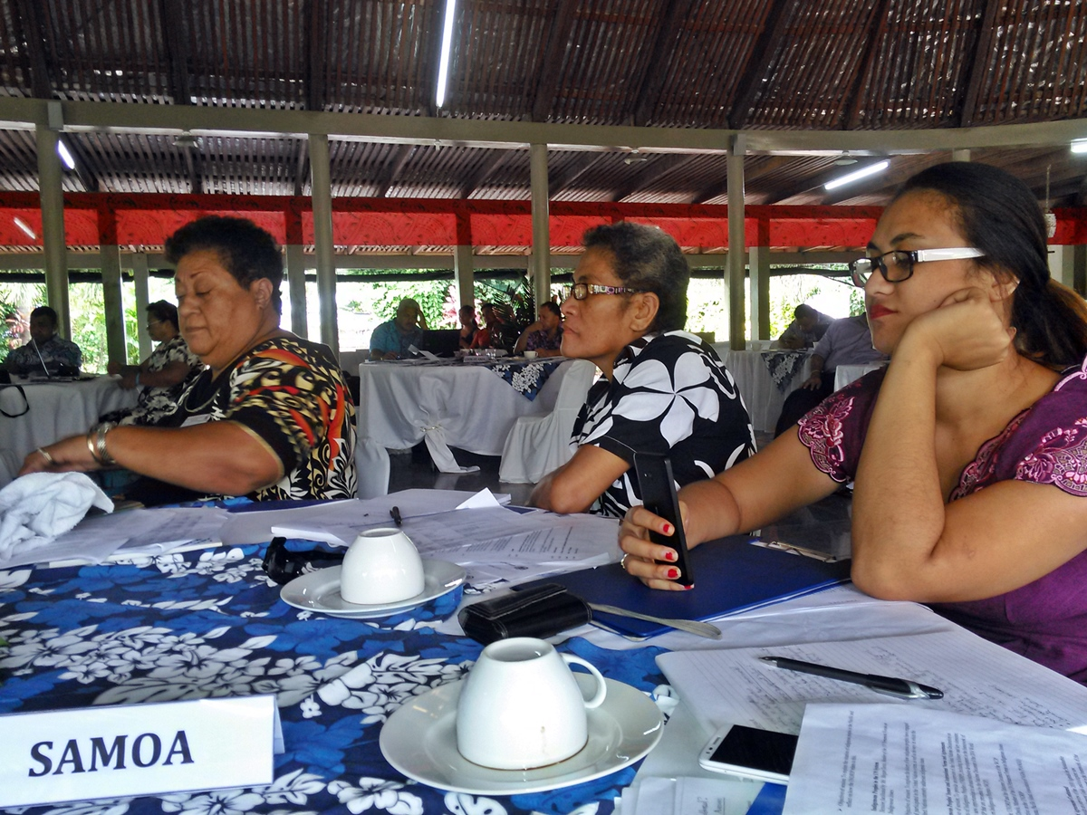 Indigenous Workshop - Participants from Samoa