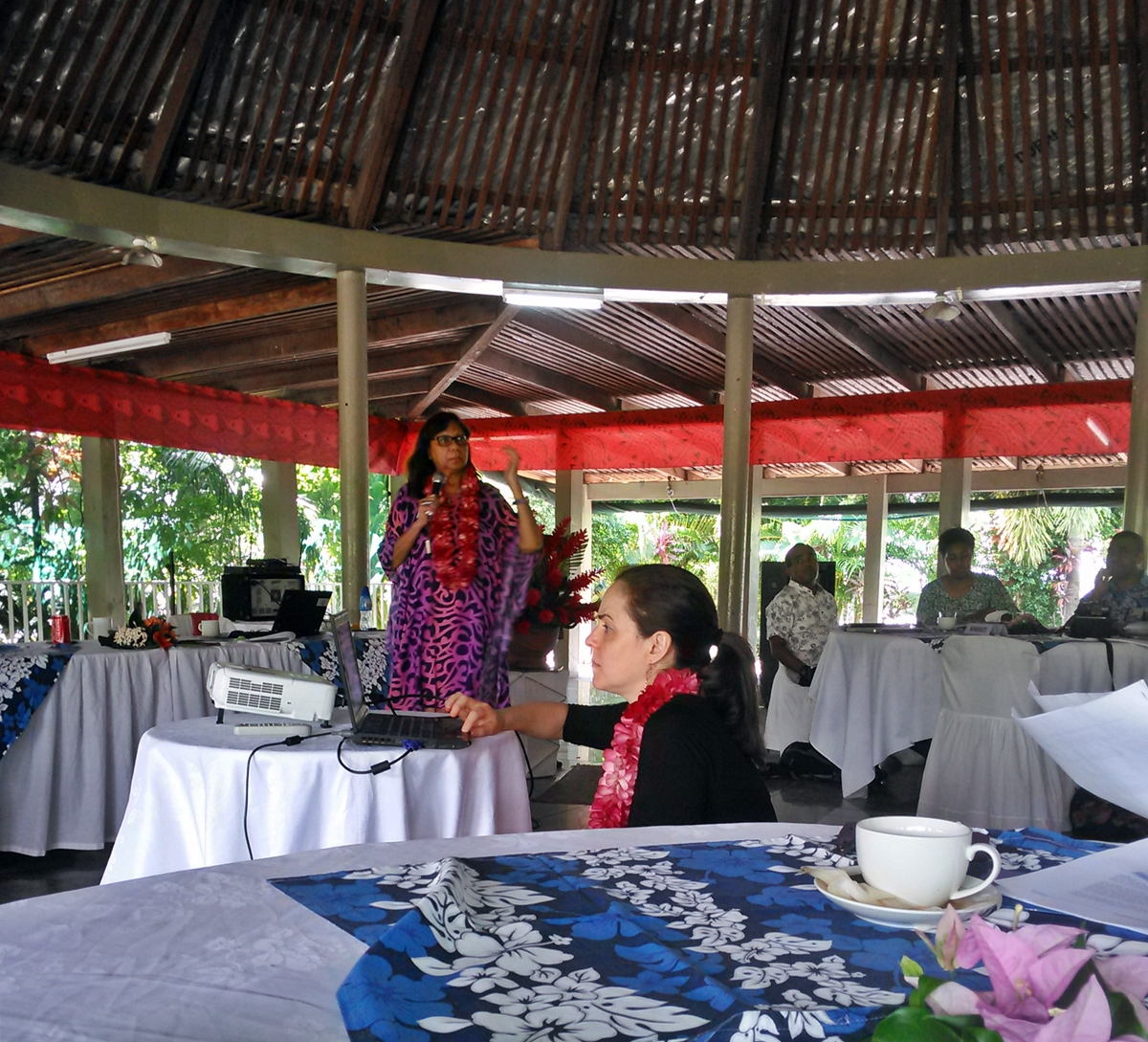 UNDESA Officer, Sonia Smallacombe at the Indigenous Peoples Workshop